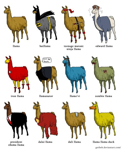 Here's a llama, there's a llama, and another little llama. Fuzzy llama,