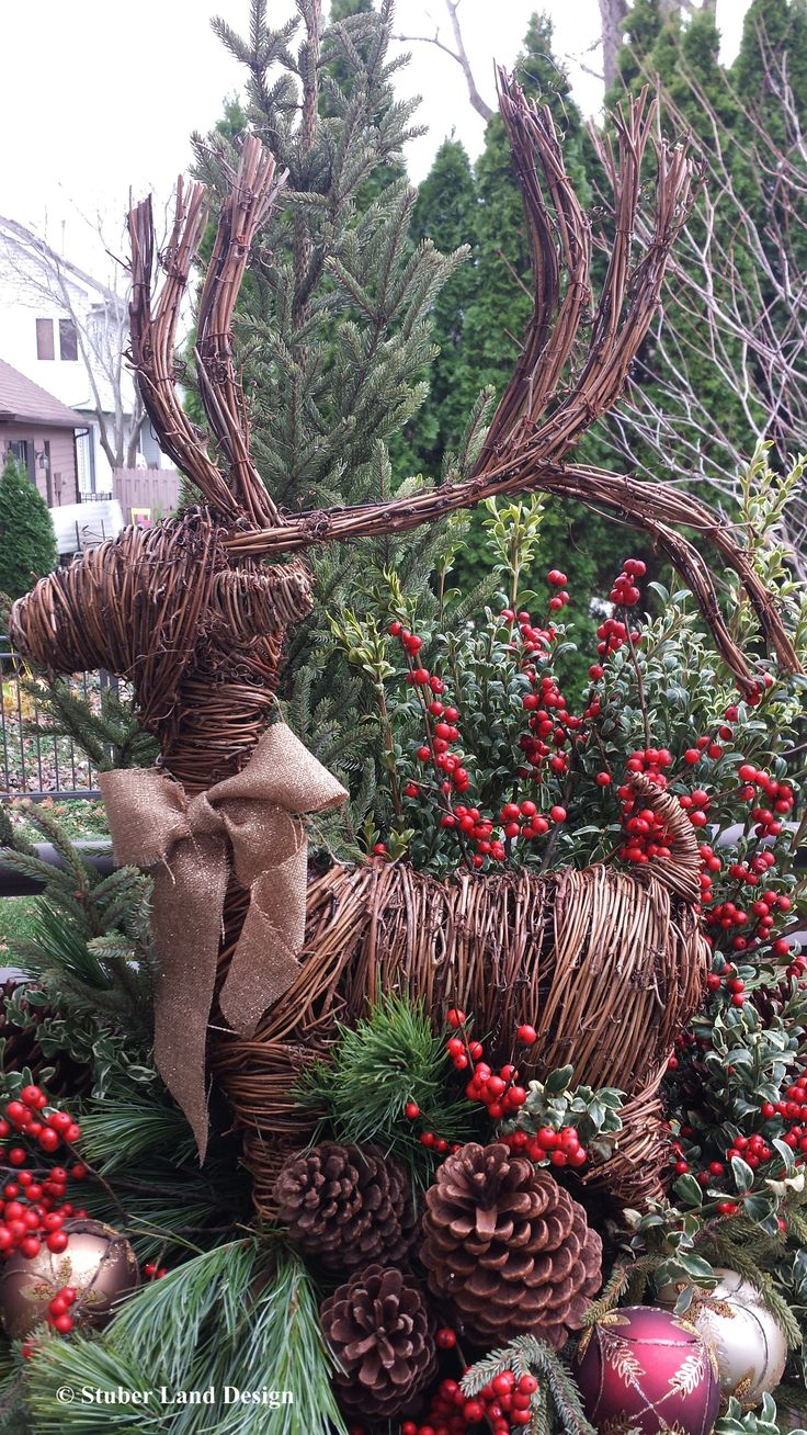 27 best winter container gardening images on pinterest winter