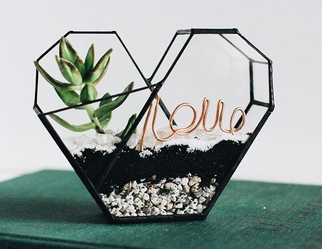 Love is everywhere💚🌱#succulents #love #terrarium #florarium #stvalentine #february14 #cactus #glass #glassbox #heart#glassheart #green#флорариум #флорариумназаказ #террариум #террариумназаказ #сердце #суккулент #кактус #растения#минимир #любовь #подарок #деньсвятоговаленина #14февраля #14февраляподарок