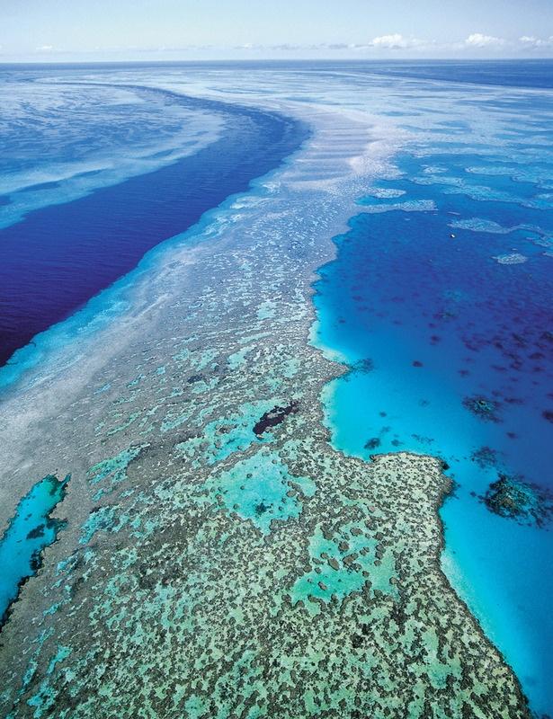 Barrera de coral. Australia