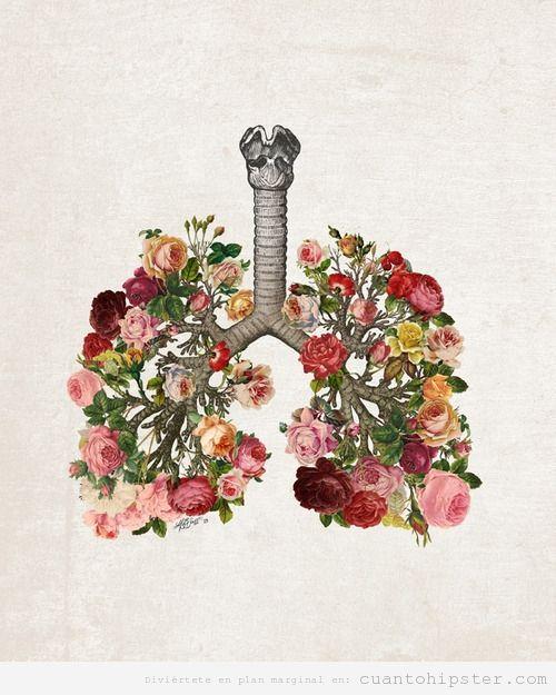 Ilustración idie bonita de unos pulmones con flores