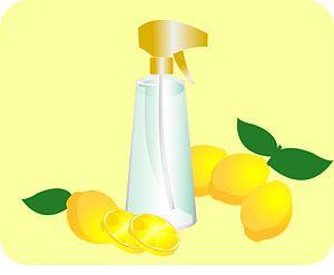 lemon spray - homemade flea control for your pet!