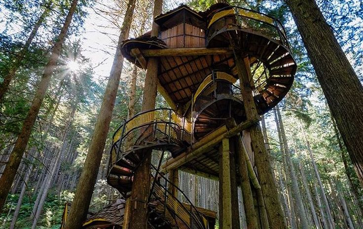 This Enchanted Forest Only A Few Hours From Vancouver Is Worth The Drive