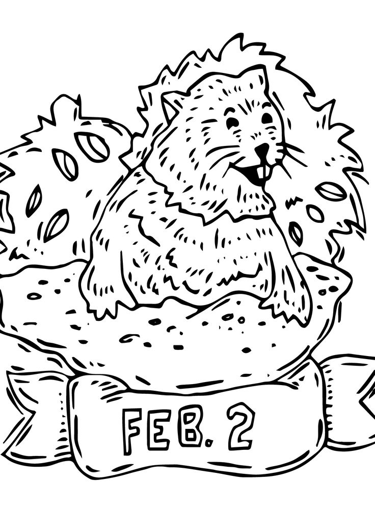 10 besten Groundhog Day Coloring Page Bilder auf Pinterest ...