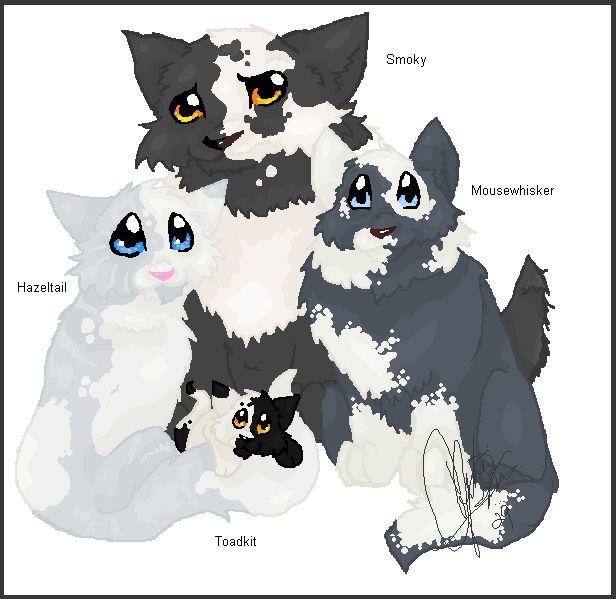 Výsledek obrázku pro warriors cats smoky