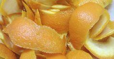 Não Perca!l Nunca mais jogue a casca de laranja no lixo! Saiba porque!