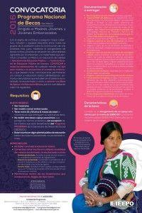 Lanzan IEEPO y SEP convocatoria del Programa Nacional de Becas 2016 para madres y jóvenes embarazadas