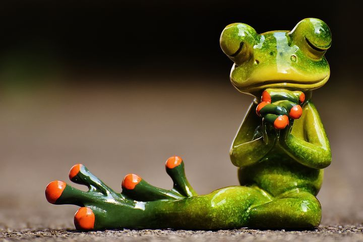 Frog Pray Harmony Figure Decoration F