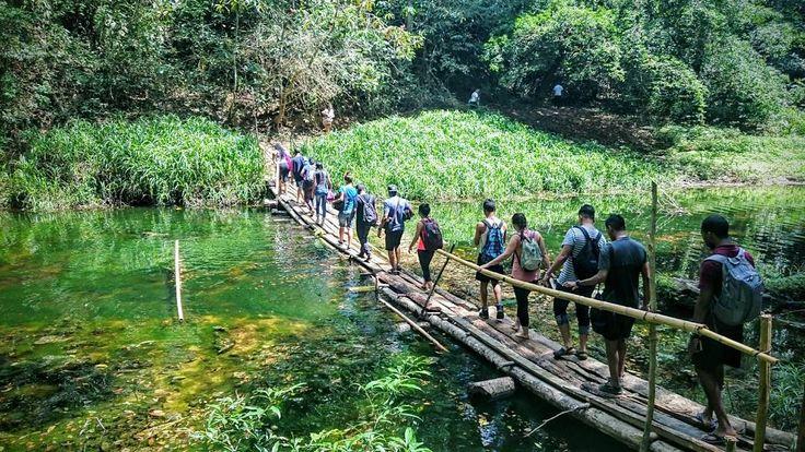 Naturaleza tropical nivel:💯 [ Senderismo por el Parque Nacional Chagres ]😍#goodtimes#traveling#trip  #nature#landscape#aventure #photography #xperiaz#Panama👟📷🐜🐨🐢🐒🐍