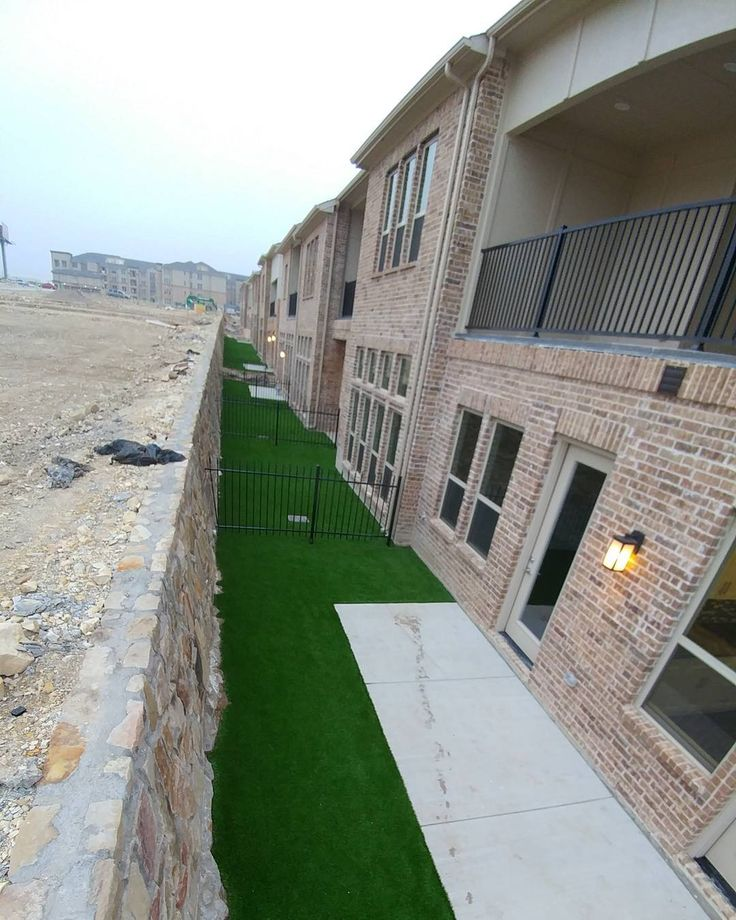 how to get green grass in texas
