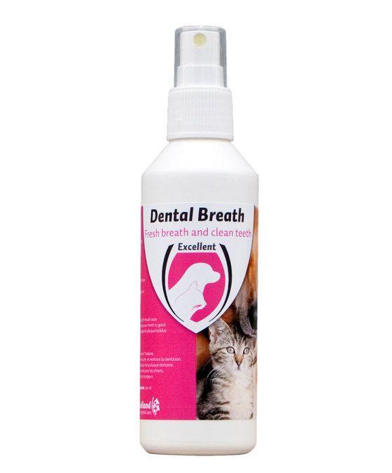 Excellent Mondspray hond en kat  Zorgt bij regelmatig gebruik voor een frisse adem en houdt het gebit in optimale conditie. Dental Breath  Tooth Spray gaat de vorming van tandplak tegen. Toepassing bij honden katten en fretten.  EUR 9.95  Meer informatie