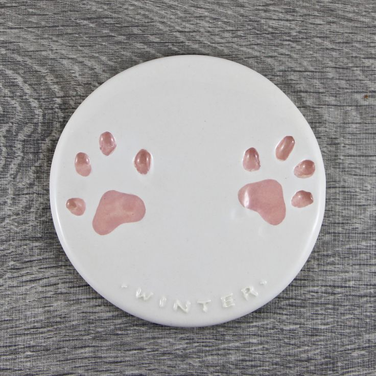 this impression for Winter the cat has a baby pink paw and white background. #pawprint #petlove