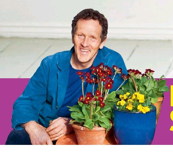 Longmeadow Apartments: 55 Best Monty Don / Longmeadow Images On Pinterest