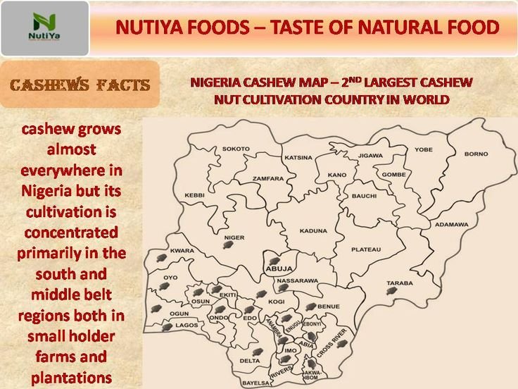 CASHEWS  FACTS - #Nigeria  2nd Largest Cashew #nut cultivation country in world..Cashew Map Nigeria. #cashew grows almost everywhere in Nigeria but its cultivation is concentrated primarily in the south and middle belt regions both in small holder farms and plantations.  #Nutiya #Cashews #Foods #Vanajamaagro #Exports #Processing #womenpower #WomensWorldCup2017