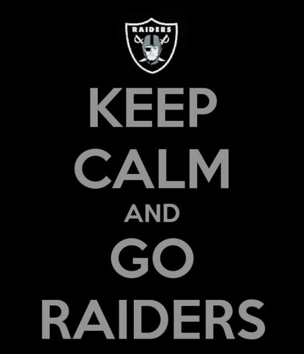 8800d5ca856d08c2b141d464c767c263 raiders football raiders baby 25 best raiders memes, quotes and more images on pinterest raider
