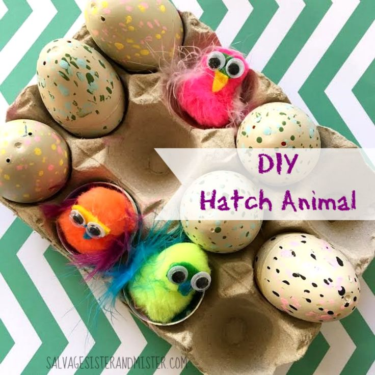 """DIY your own """"hatch Animals""""  The most popular gift can be made by reusing last years plastic Easter eggs.  This quick craft is easy for kids to do wtih just a little parent help.  Fun for a valentine or for a rainy day craft."""