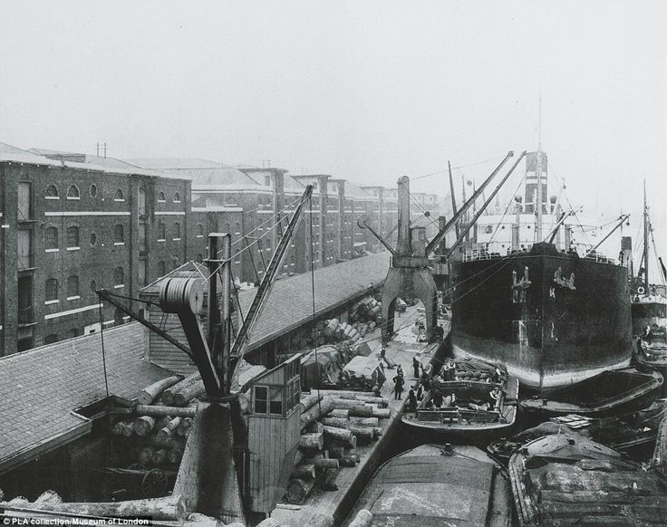 Remarkable photographs of Canary Wharf show how busy financial centre was once a thriving port taking in sugar, rum and elephants