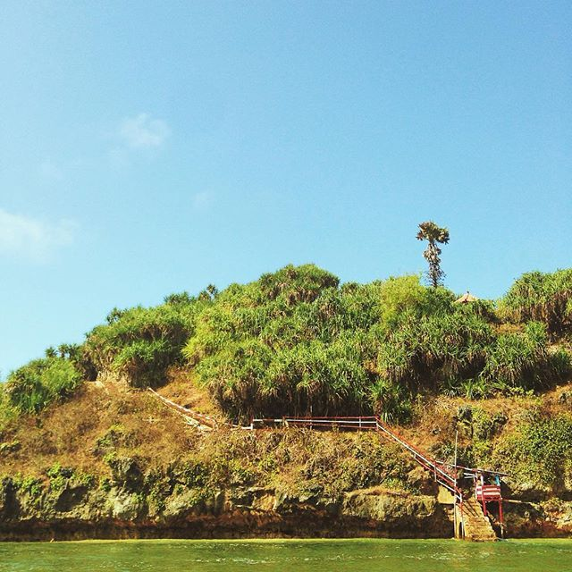 Menyeberang pulau. Ada sebuah pulau di Drini batu besar tepatnya. Di atasnya terdapat mercusuar dari sana terlihat laut lepas. Menyeberang meniti tali baru naik tangga ke atasnya.  #drini #beach #indonesia #yogyakarta #liveauthentic #livefolk #exploreindonesia #jelajahindonesia #wonderfulindonesia #naturelover #blue #passionpassport #mobilemag