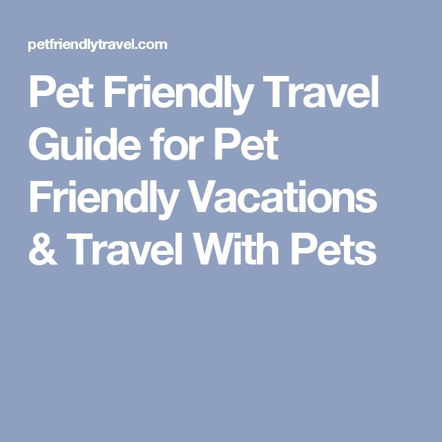 Pet Friendly Travel Guide for Pet Friendly Vacations & Travel With Pets