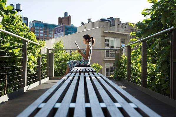 Menikmati udara di Ruang Terbuka kota New York