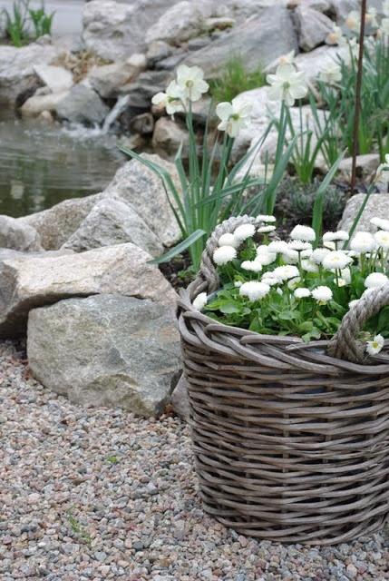 Basket in the garden