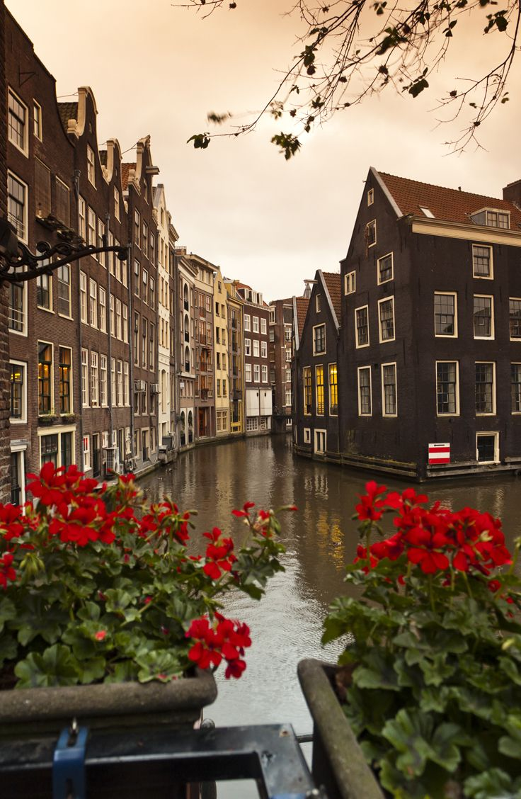 Take a historic walk through Amsterdam on Day 9 of the Rick Steves Heart of Belgium & Holland Tour.