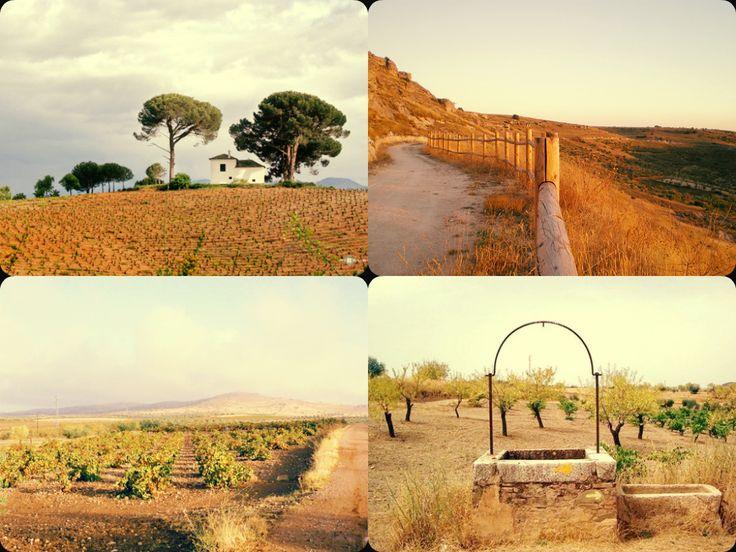 Absorbing landscape - Via de la Plata (Silver Way), Section 2/10: Monesterio to Merida
