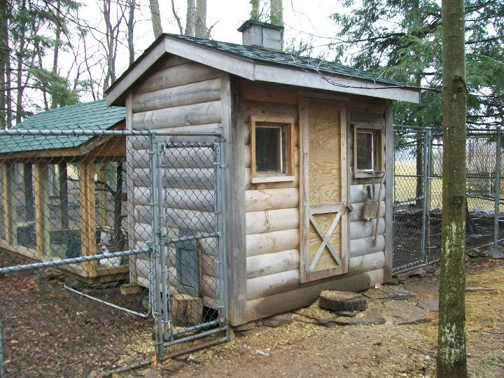 625 best coops images on pinterest for Old farm chicken coops