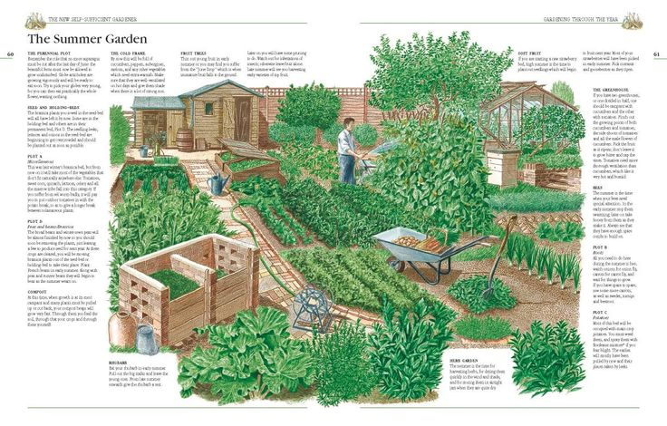 A summer garden from john seymour 39 s the new self Small farm plans layout