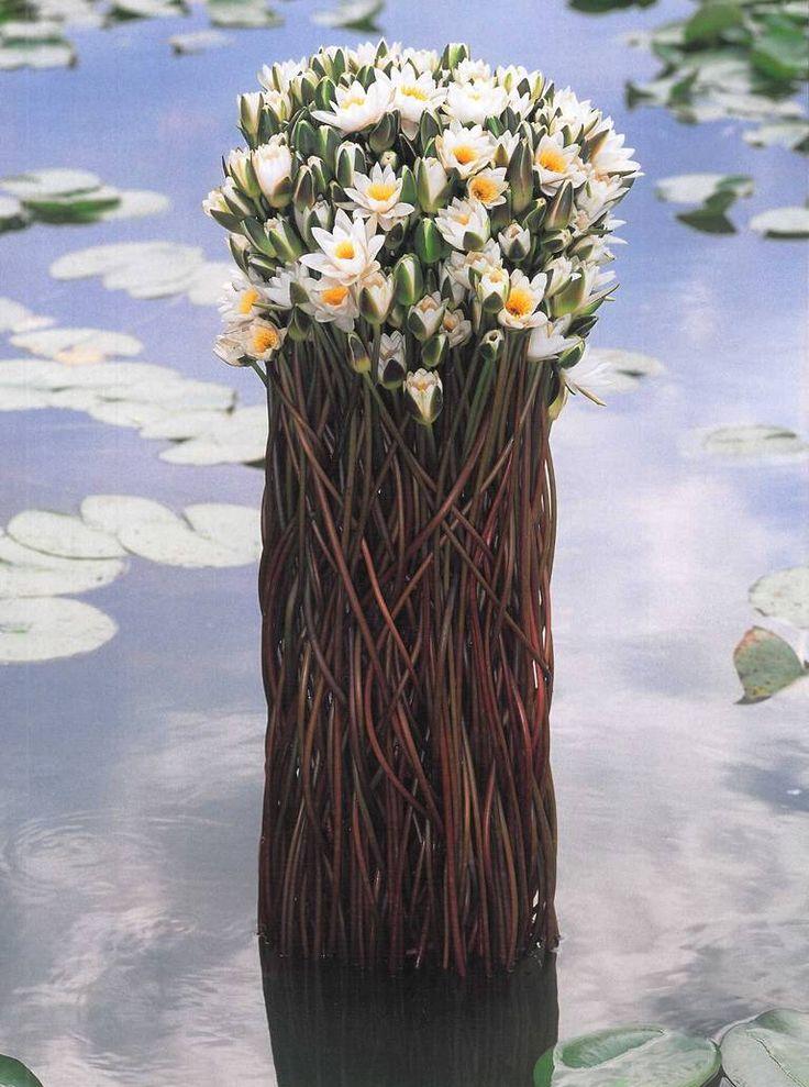 """... """"Leafing Through Flowers"""" by Daniel Ost ..."""