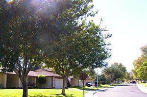 Fort Irwin, California: Housing
