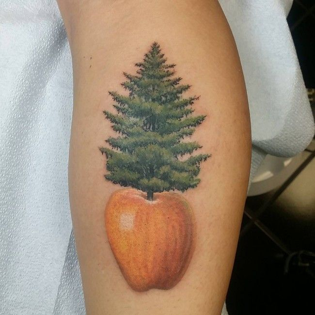 609 best images about tree tattoos on pinterest trees for Apple tree tattoo designs
