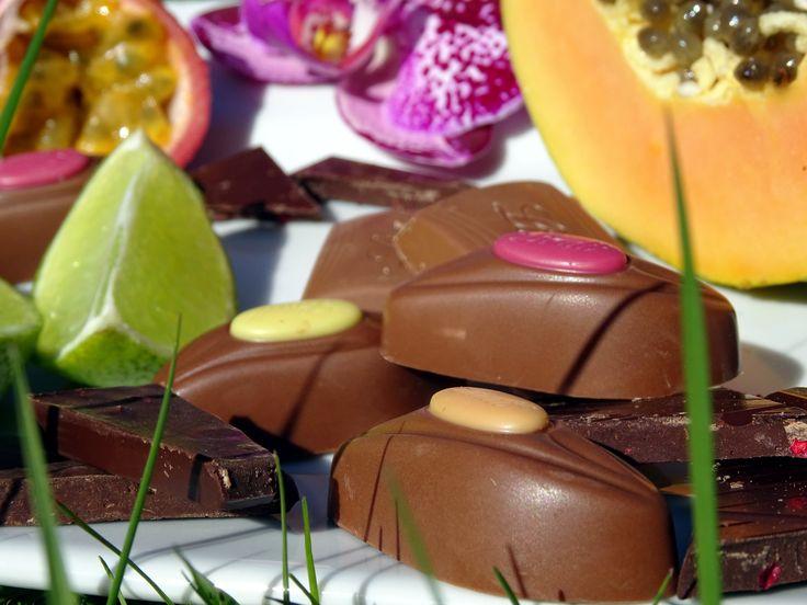 Lindt Schokolade wird exotisch: von Lindt Schokolade gibt es jetzt die neuen leckeren Sommersorten Mango-Maracuja, Papaya, Acai-Beere, Himbeere und Limette.