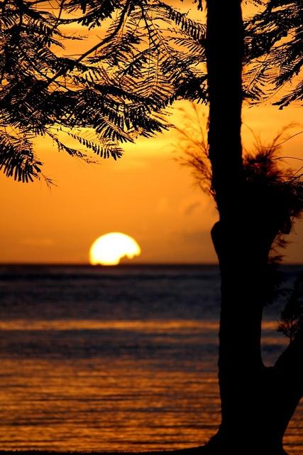 partially caught!, via Flickr. Taken in Saipan