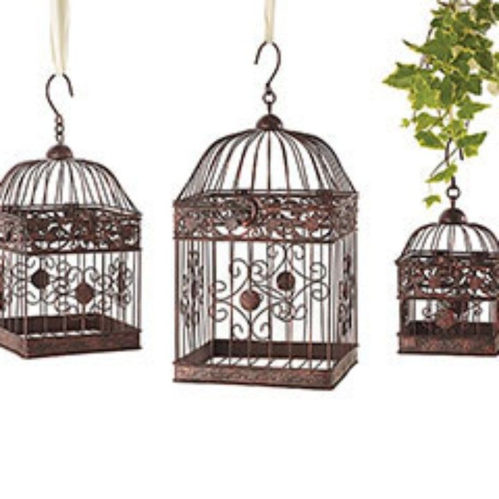 Birdcage - Dark Brown Iron from Bubbles & Giggles by REE for $15.99