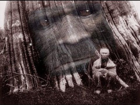 Just Another AMAZING 19th Century Bigfoot Sighting