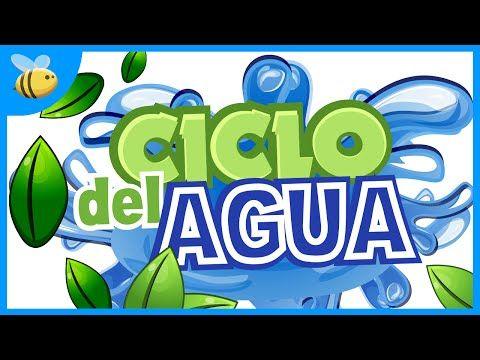 El Ciclo del Agua | Videos Educativos para Niños - YouTube