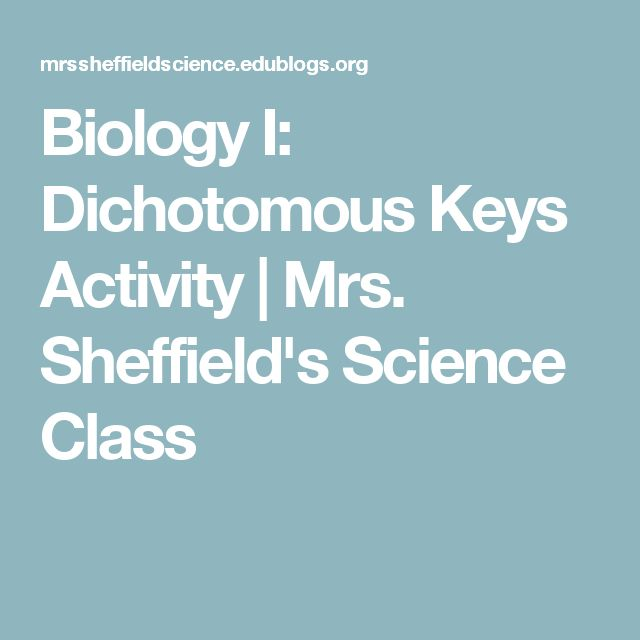 Biology I: Dichotomous Keys Activity | Mrs. Sheffield's Science Class