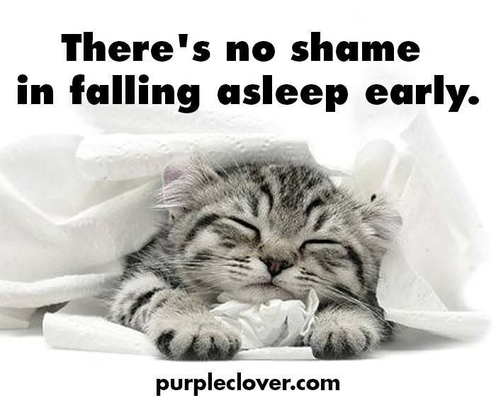 It's lovingly called a 'cat nap' ....