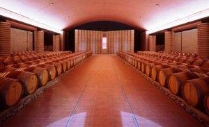 Il vino in Friuli Venezia GiuliaWine, Un Educazione Fondamental, Fondamental Che, Venezia Giulia, Corso Spirito, Friuli Venezia, Vuol Preparar, Conoscenza, Che Vuol