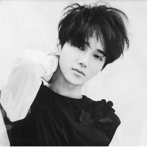 SUPER JUNIOR // YESUNG