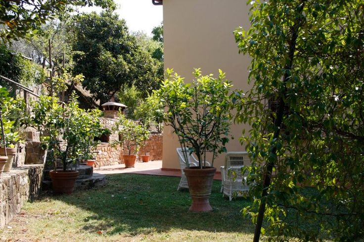 The garden surrounding the house