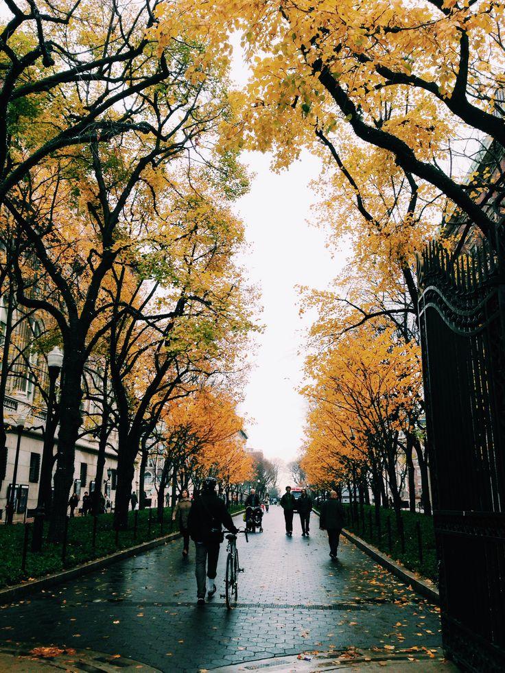 Columbia University, New York. photo by Sabrina Wang.