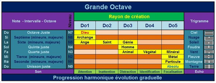 octave_creation4.jpg