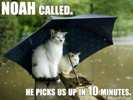 Noah Called,.....He Pick Us Up In 10 Minutes. @Maryann Hein @Tamyka Brown
