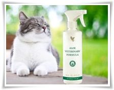 Forever veterinary Formula for cats, dogs, horses etc. Available online at www.kimandterry.myforever.biz
