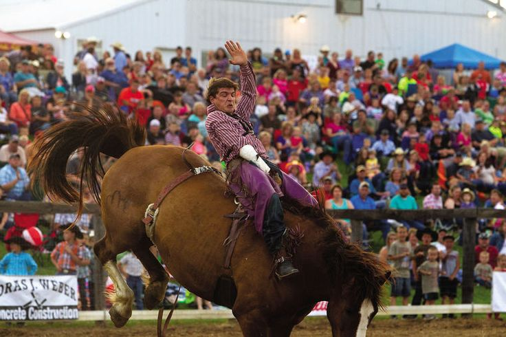 """BELLEVUE, Iowa -- Dave Whitmoyer loves to entertain. He also loves """"controlled chaos."""" Jackson County Pro Rodeo"""