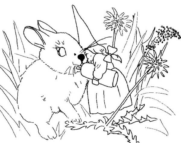 david the gnome, : David the Gnome Wife Give Milk to Baby Rabbit Coloring Pages