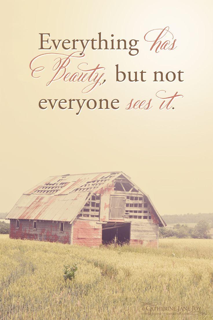 Everything has beauty....    photography copyright - Catherine Jane Joy
