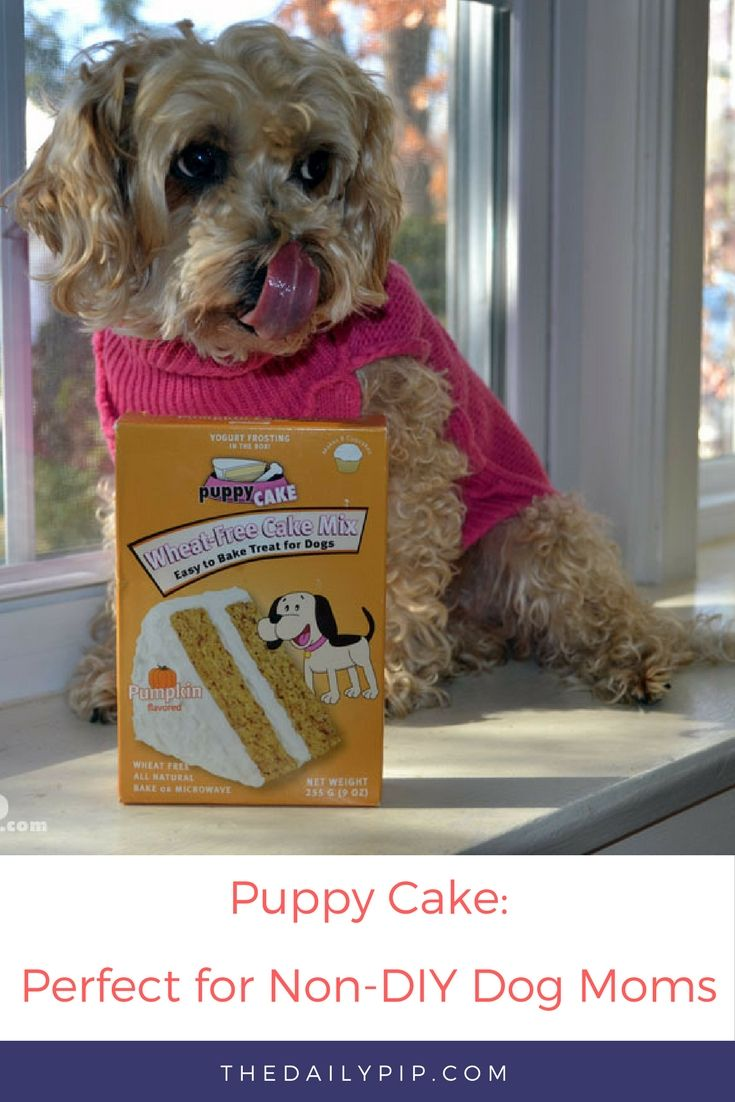 Puppy Cake Wheat-Free Cake Mix is the perfect easy to make cake for non-DIY dog moms